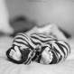 columbus_baby_photographer_35